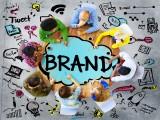 Bài học xây dựng và phát triển thương hiệu doanh nghiệp